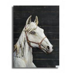 White horse 60x80 FOND BOIS