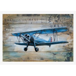Avion 488 40x60