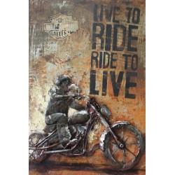 Ride nice 40x60