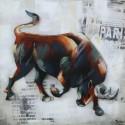 Dynamic bull 80x80
